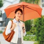 シンプルカラー折りたたみ傘1本
