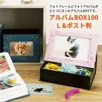 アルバムBOX100 L/ポスト判